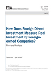 How Does Foreign Direct Investment Measure Real Investment by Foreign-owned Companies? Firm-level Analysis - ETLA-Raportit-Reports-27