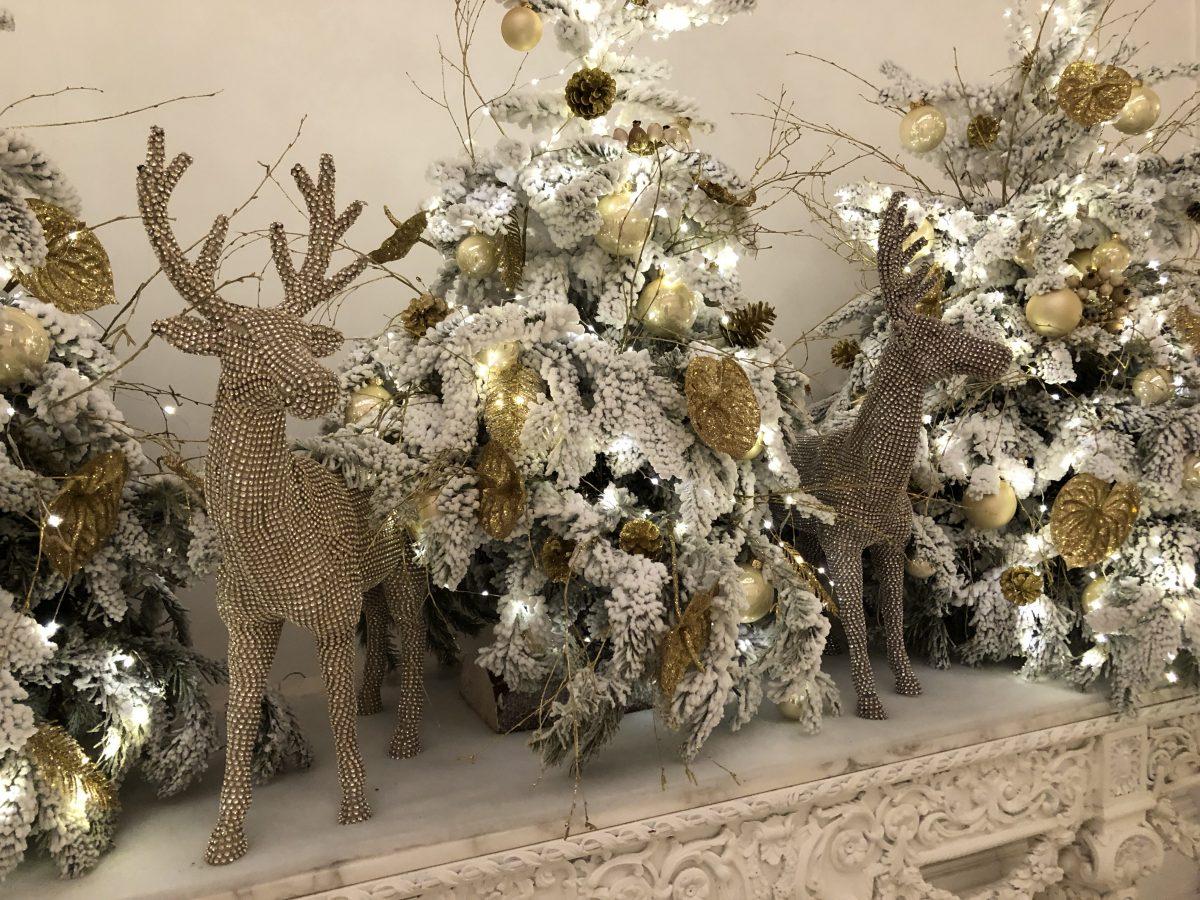 Etla toivottaa rauhallista joulua!